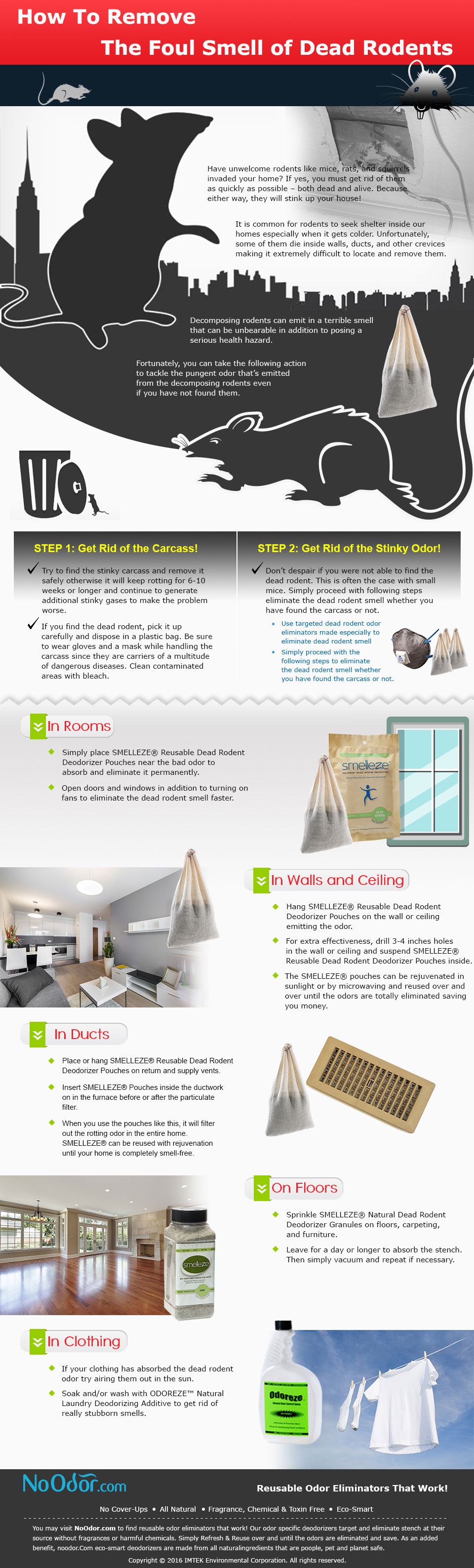 How-to-Remove-the-Foul-Smell-of-Dead-Rodents